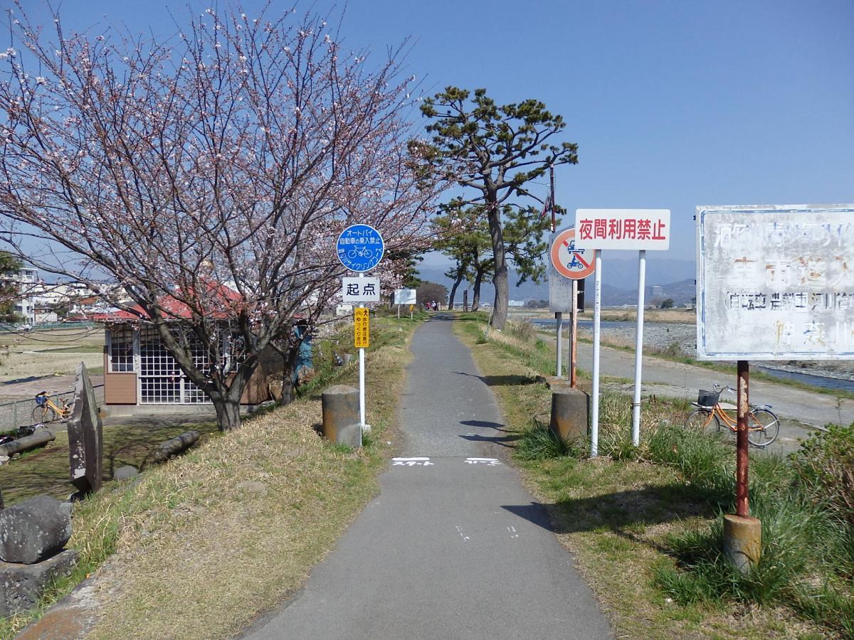 2015.3.30春の酒匂川サイクリングコース1