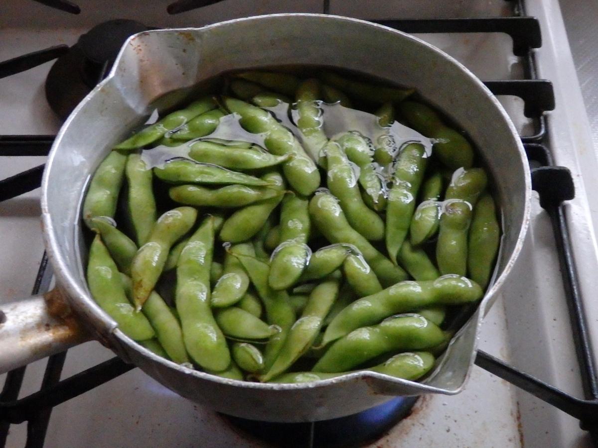 2015.7.13枝豆豆腐1